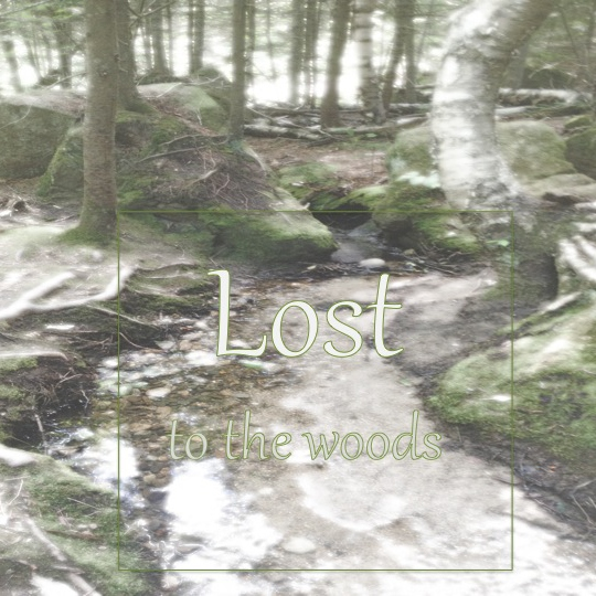 Lost to the Woods