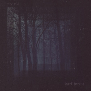 TAPE #31: dark forest