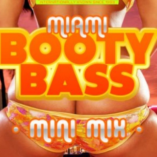 A window into old school Miami Bass songs about booty.