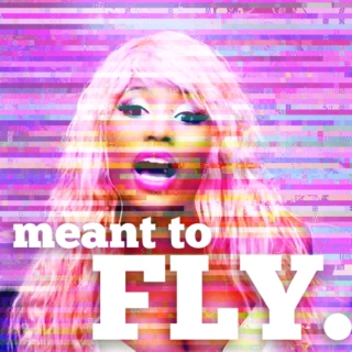 meant to fly.