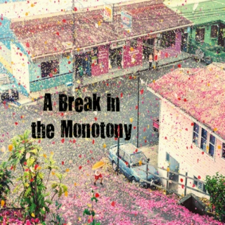 A Break in the Monotony