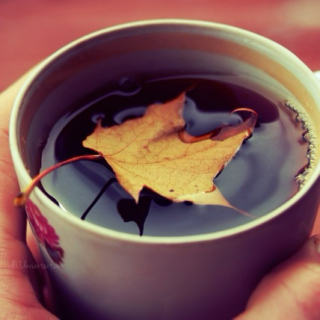 Chai Tea and Crunchy Leaves