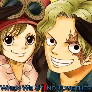 One Piece Fanmix - When We Stand Together