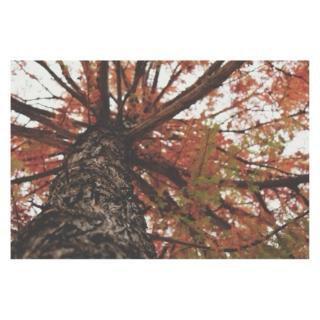 Songs that Remind Me of Autumn