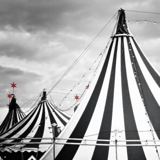 The Circus Arrives Without Warning