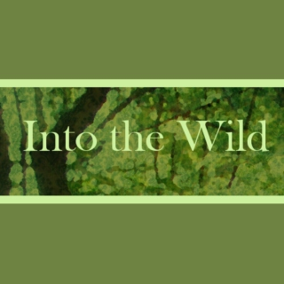 Into the Wilds