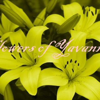 Flowers of Yavanna