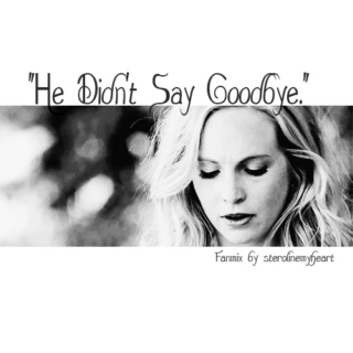 """He Didn't Say Goodbye"" a Steroline Fan Mix"