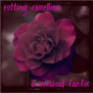 Rotting Camellias