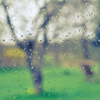 songs for rain and loneliness