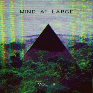 Mind at Large --DJ Set-- Vol. II