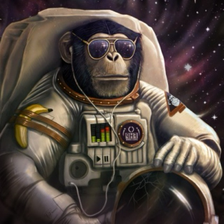 Funky Space Monkey