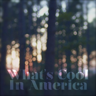 What's Cool in America