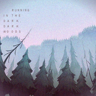Running in the Dark, Dark Woods