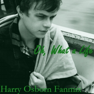 Oh, What a Life (Harry Osborn Fanmix)