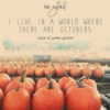 Pumpkins and Tea