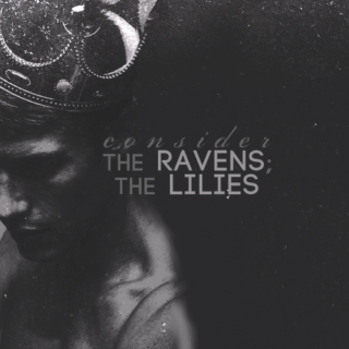consider the ravens; the lilies