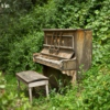 The magic of the piano