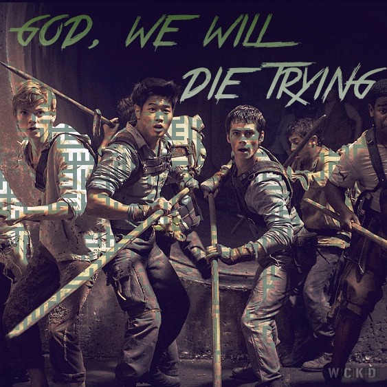 god, we will die trying