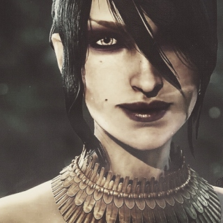 We will face the future together (Morrigan Warden)