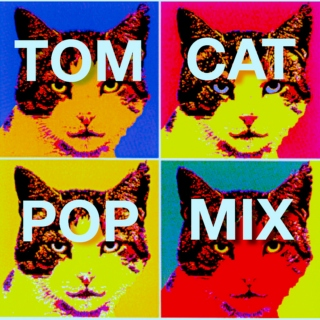 TomCat Pop Mix, Vol. 1
