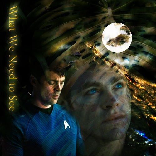 What We Need to See - Kirk/McCoy Fanmix