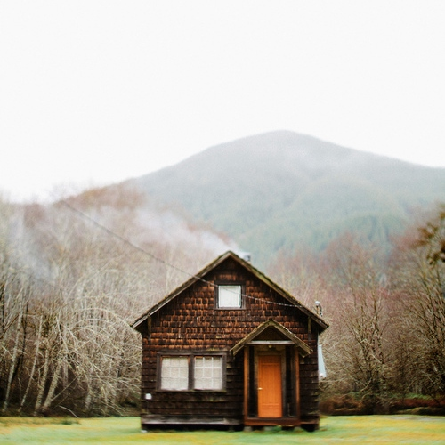 Building a Cabin in the Woods- Becca