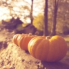 sounds of fall