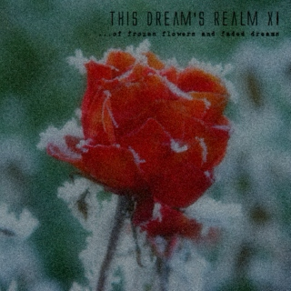 this dream's realm XI - ...of frozen flowers and faded dreams!!!
