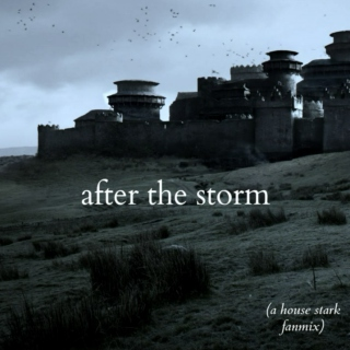 after the storm [a house stark fanmix]