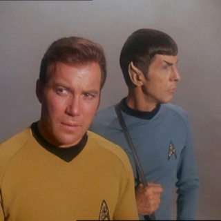 Illogical Love