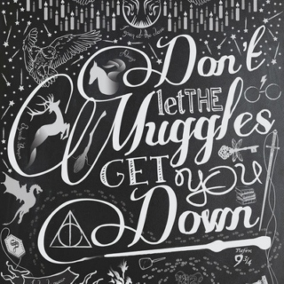 Don't let the muggles get you down