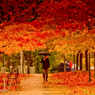 Chill out, it's Autumn