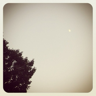 as the moon waned to crescent