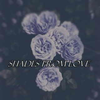 Shades From LOVE