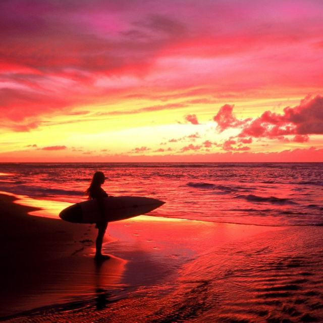 All I want to do is SURF!