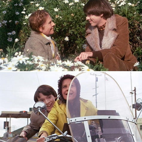 A Day With Harold and Maude