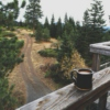 coffee in the woods