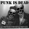 Punk Is Dead- A punk/pop-punk/ska-punk mix