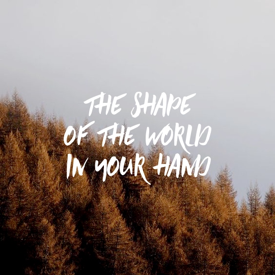 the shape of the world in your hand