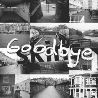 a goodbye to skins
