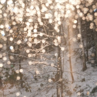 ❅ All That Glitters is Snow ❅