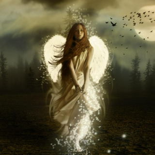in the arms of an angel ..