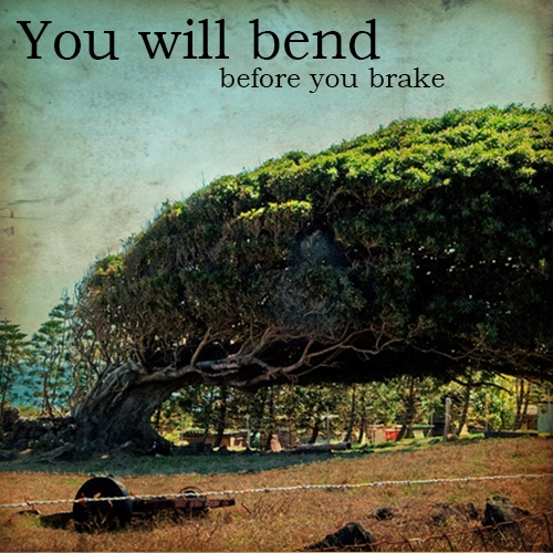 You Will Bend