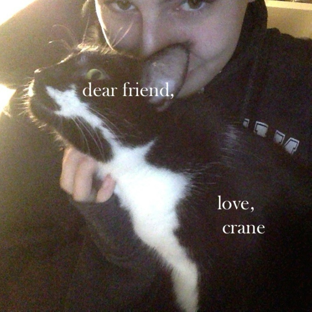 dear friend, love crane