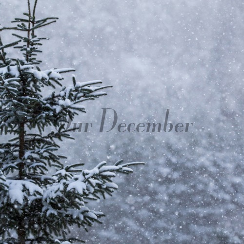 Our December