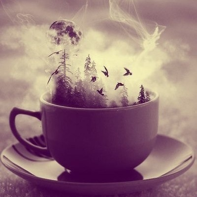 Have a cup of music