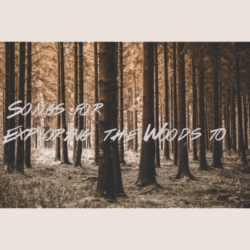 Songs for Exploring the Woods to