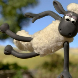 Mr Suicide Sheep (Y)