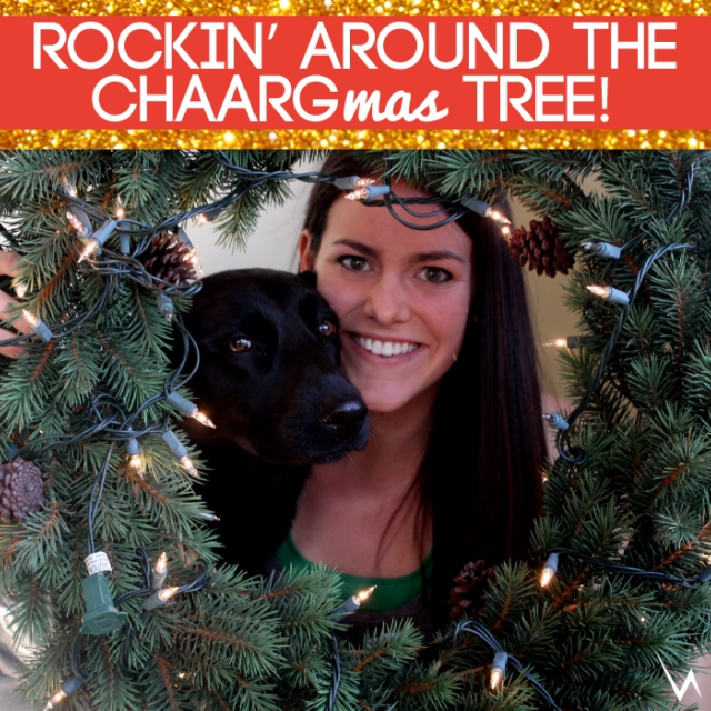 Rockin' Around The CHAARGmas Tree